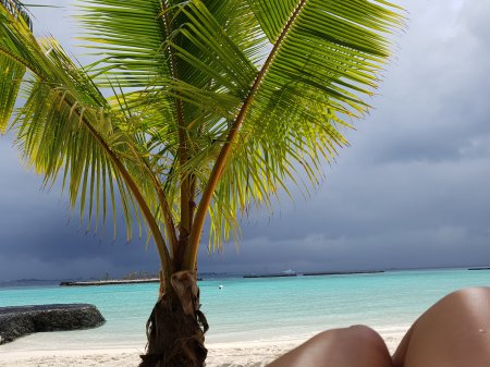 Awaiting the Storm Kurumba