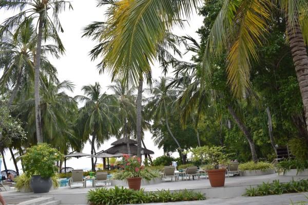 Pool Area Kurumba Maldives
