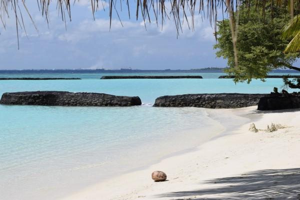 Coconut Kurumba Maldives